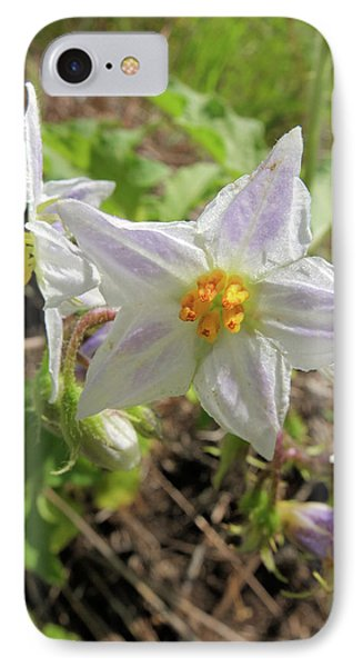 IPhone Case featuring the photograph Horse Nettle by Scott Kingery