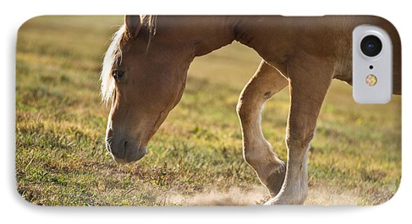 Horse Pawing In Pasture Phone Case by Steve Gadomski
