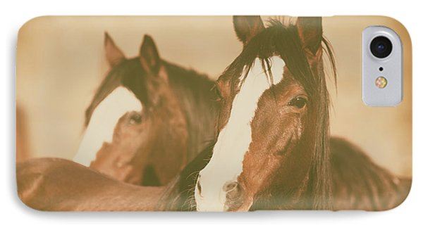 IPhone Case featuring the photograph Horse Portrait by Ana V Ramirez