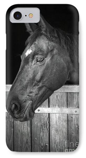 IPhone Case featuring the photograph Horse Portrait by Delphimages Photo Creations
