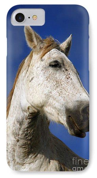 Horse Portrait Phone Case by Gaspar Avila