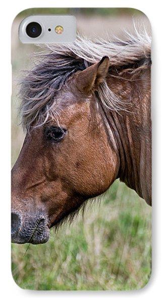 Horse Portrait IPhone Case by Michael Cummings