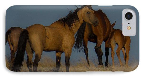Horses 1 IPhone Case