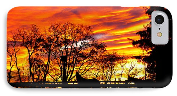 IPhone Case featuring the photograph Horses And The Sky by Donald C Morgan