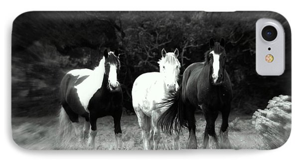 Horses IPhone Case by Frances Lewis