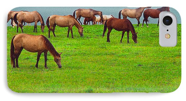 Horses Graze By Seaside IPhone Case by Thomas R Fletcher