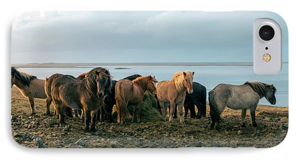 IPhone Case featuring the photograph Horses In Iceland by Dubi Roman