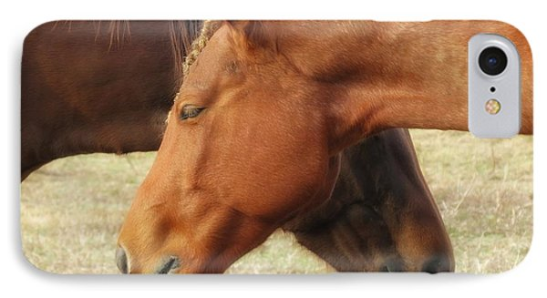 Horses In Sinc IPhone Case