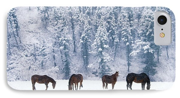 Horses In The Snow Phone Case by Alan and Sandy Carey and Photo Researchers