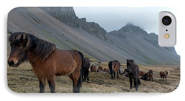 IPhone Case featuring the photograph Horses Near Vestrahorn Mountain, Iceland by Dubi Roman