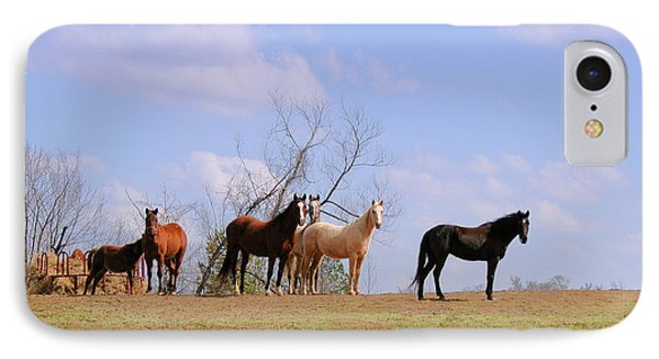 IPhone Case featuring the photograph Horses On The Hill by Bonnie Willis