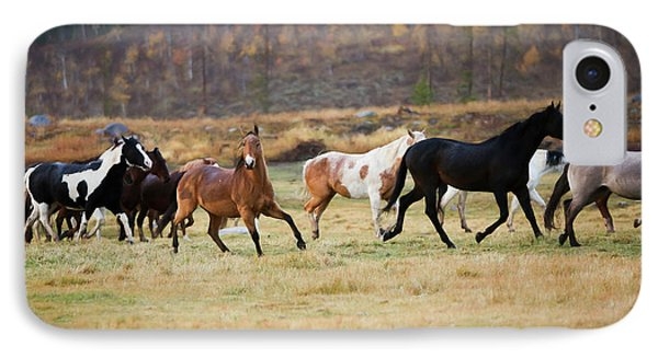 IPhone Case featuring the photograph Horses by Sharon Jones
