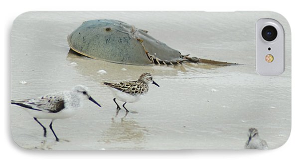 IPhone Case featuring the photograph Horseshoe Crab With Migrating Shorebirds by Richard Bryce and Family