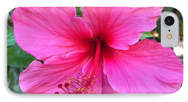 Hot Pink Hibiscus  IPhone Case by Russell Keating