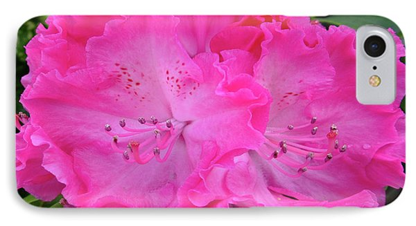 Hot Pink Rhoda IPhone Case