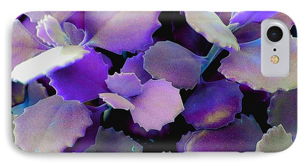Hothouse Succulents IPhone Case