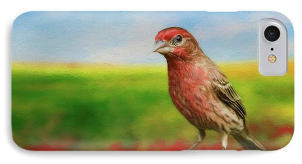 IPhone Case featuring the photograph House Finch by Steven Richardson