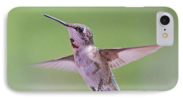 Hovering Hummingbird 5 IPhone Case