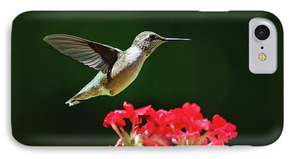 Hovering Hummingbird Phone Case by Christina Rollo