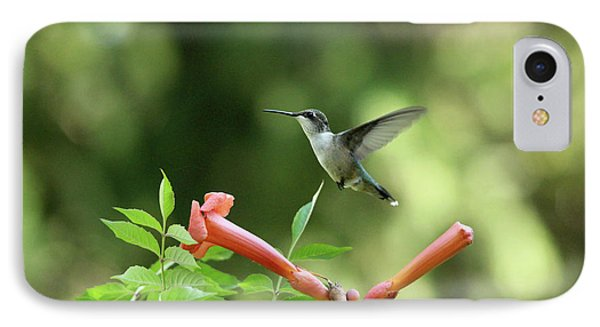 Hovering Hummingbird IPhone Case by Debbie Oppermann