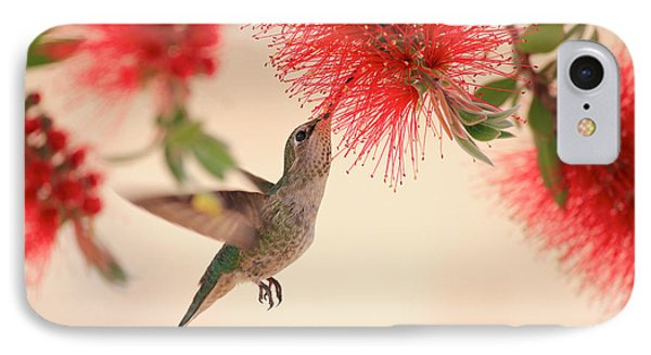 Hovering Hummingbird IPhone Case by Penny Meyers