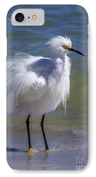 Egret iPhone 7 Case - How Do I Look by Marvin Spates