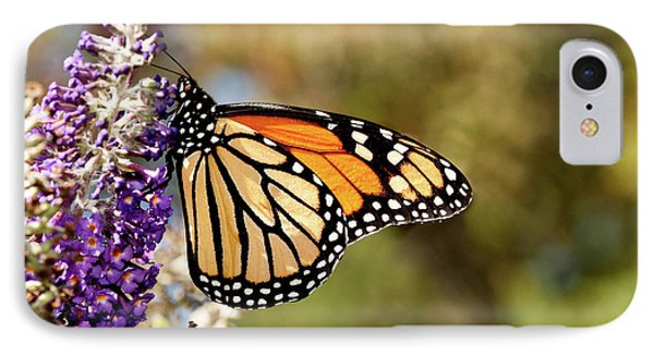 IPhone Case featuring the photograph Hues Of Autumn Monarch by Lara Ellis