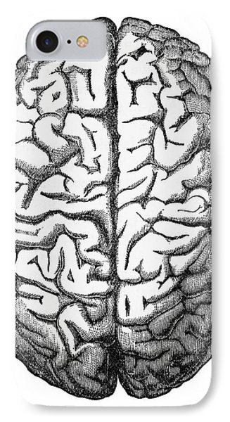 Human Brain Isolated On White Engraved Illustration, Circa 1880 IPhone Case