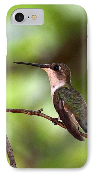 Hummingbird - Afternoon Ruby IPhone Case by Travis Truelove
