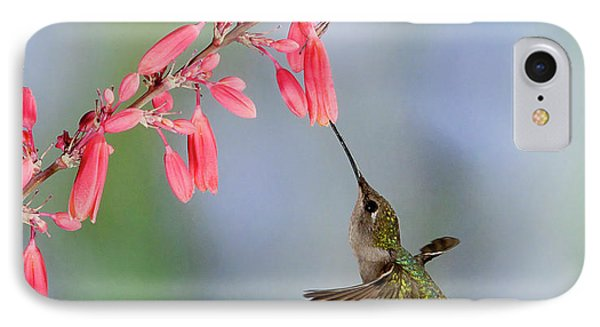 Hummingbird IPhone Case by Alan Toepfer