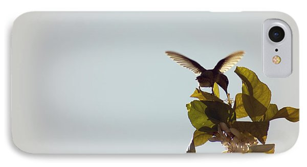 IPhone Case featuring the photograph Hummingbird And Lemon Blossoms by Cindy Garber Iverson