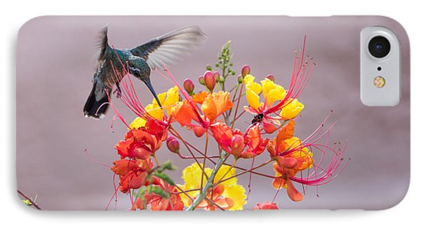 IPhone Case featuring the photograph Hummingbird At Work by Dan McManus