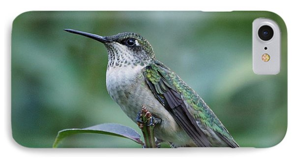 Hummingbird Close-up Phone Case by Sandy Keeton