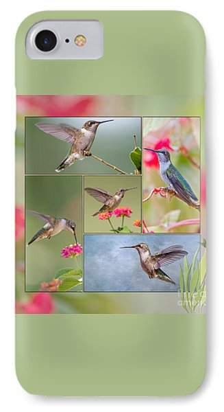 Hummingbird Collage IPhone Case