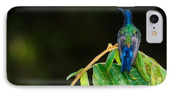 Hummingbird IPhone Case by Daniel Precht