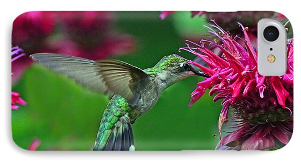 IPhone Case featuring the photograph Hummingbird Gathering Nectar by Rodney Campbell