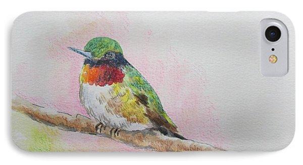 Hummingbird II IPhone Case