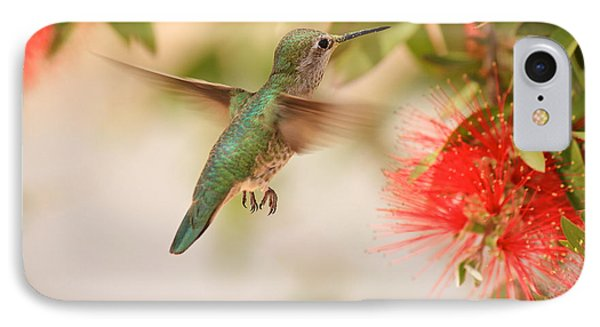 Hummingbird In Paradise IPhone Case by Penny Meyers