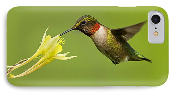 Hummingbird Phone Case by Mircea Costina Photography