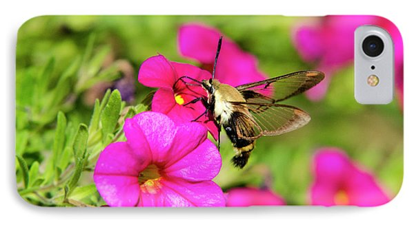 IPhone Case featuring the photograph Hummingbird Moth by Christina Rollo