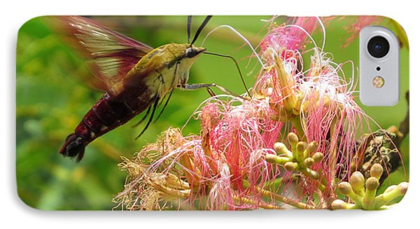 IPhone Case featuring the photograph Hummingbird Moth by Phyllis Beiser
