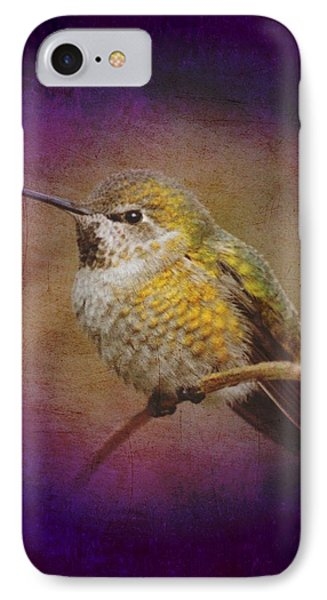 Hummingbird Rufous IPhone Case by John Wills