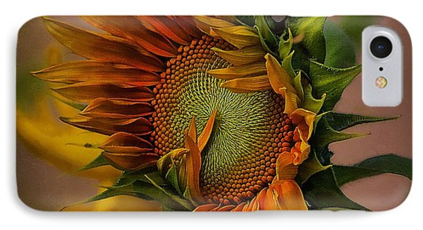 Hummingbird Sitting On Top Of The Sun IPhone Case by John  Kolenberg