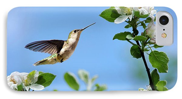 Hummingbird Springtime IPhone 7 Case