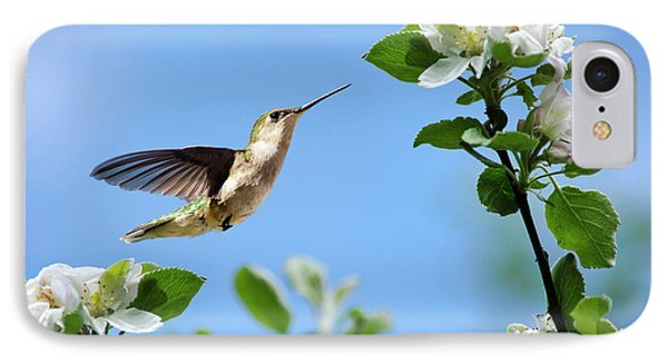 Hummingbird Springtime IPhone Case