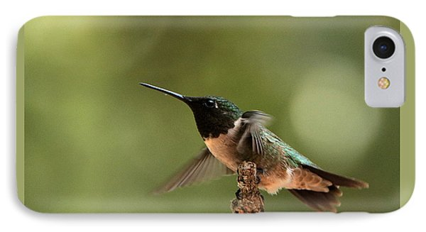 Hummingbird Take-off IPhone Case by Sheila Brown