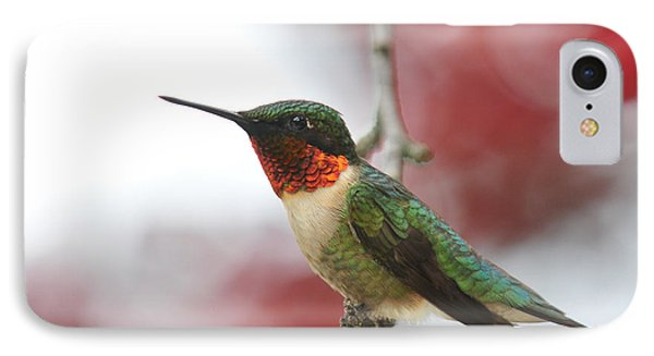 IPhone Case featuring the photograph Hummingbird Watch Tower by Lara Ellis