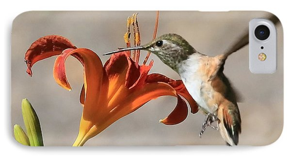 Hummingbird Whisper  IPhone Case by Carol Groenen