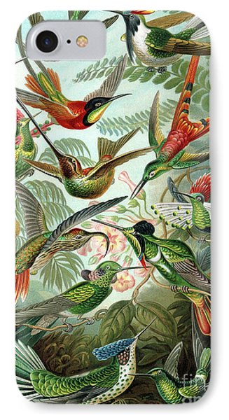 Hummingbirds IPhone Case by Ernst Haeckel