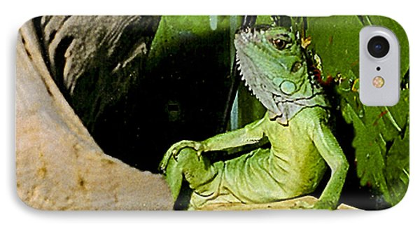Humorous Pet Iguana Photo IPhone Case by Carol F Austin